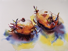 Suze Woolf painting of rooting potatoes