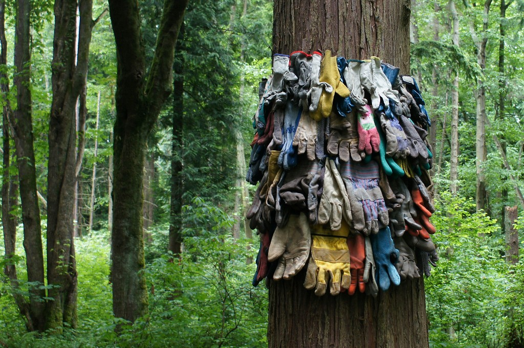 Used work gloves portion of Tree Futures installation
